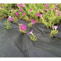 textilie černá, tkaná, propustná, role, 1 x 10 m, 100 g / m2